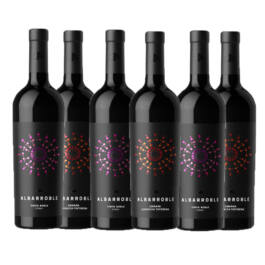 PACK 6 BOTELLAS ALBARROBLE ROBLE SYRAH Y CRIANZA GT
