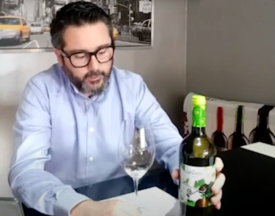 Cata Online Santa Cruz de Alpera Blanco Verdejo