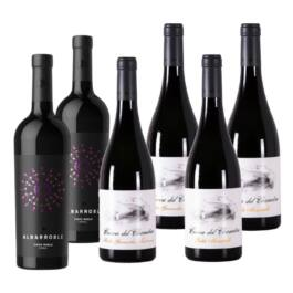 PACK 6 BOTELLAS ROBLE