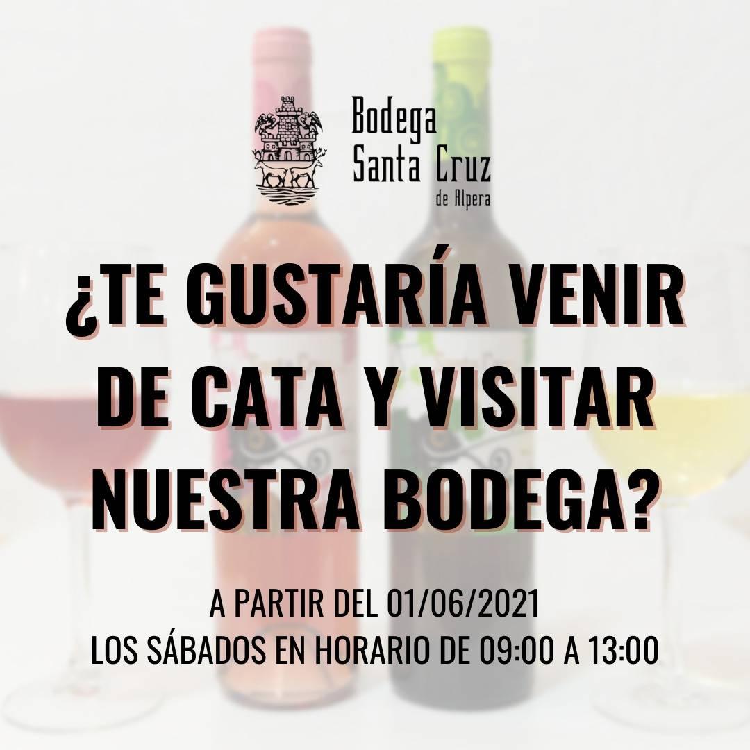 Lee más sobre el artículo ¡Apúntate a las visitas y catas de vinos en Bodega Santa Cruz de Alpera!